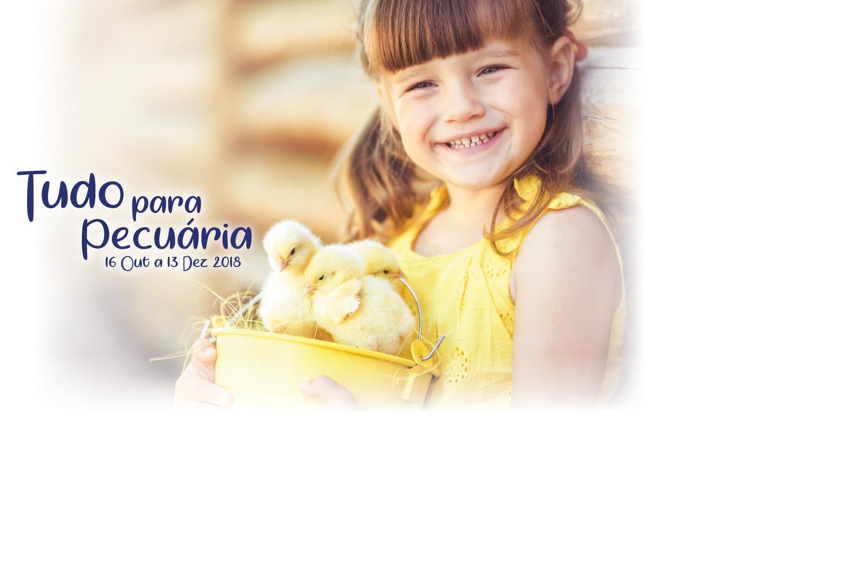Banner do folheto de pecuária 2018